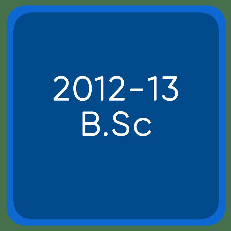 Jee Mains 2012-13 B